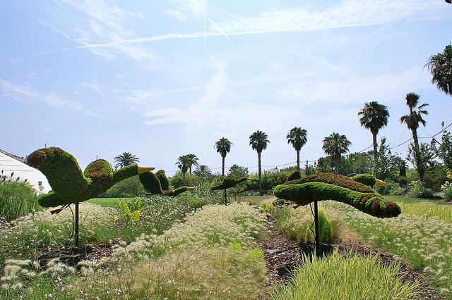 Parc Phoenix - Forrás: Flcikr - andre ALLIOT